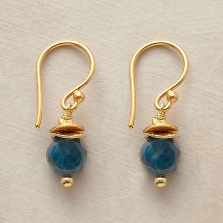 WILD BLUE YONDER EARRINGS