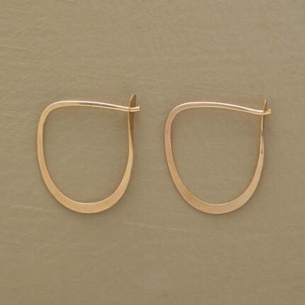 BRUSHSTROKE HOOPS