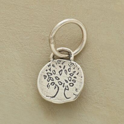 STERLING SILVER GROW STRONG CHARM