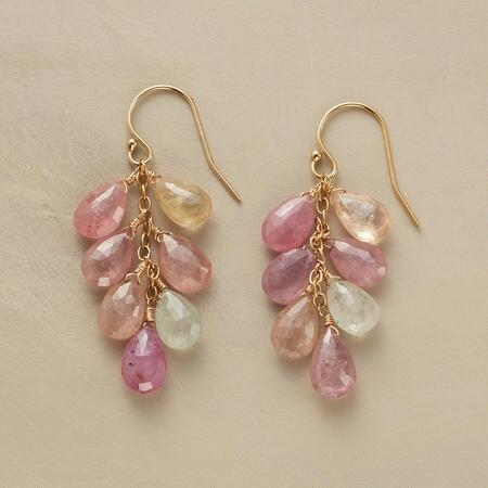 ROSY FUTURE EARRINGS