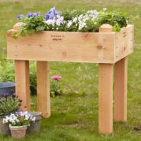 2' x 3' URBAN FARMER STANDING RAISED BED