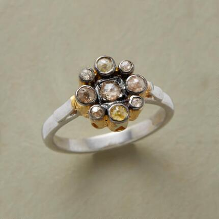 A lovely diamond posy ring that captivates with its cluster of jewels.