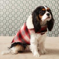 HUNTER'S PLAID DOG JACKET