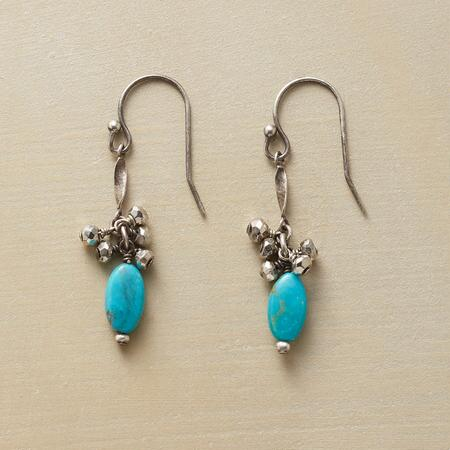 TURQUOISE WITH A TWIST EARRINGS