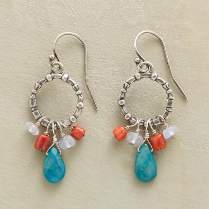 BANJO HOOP EARRINGS