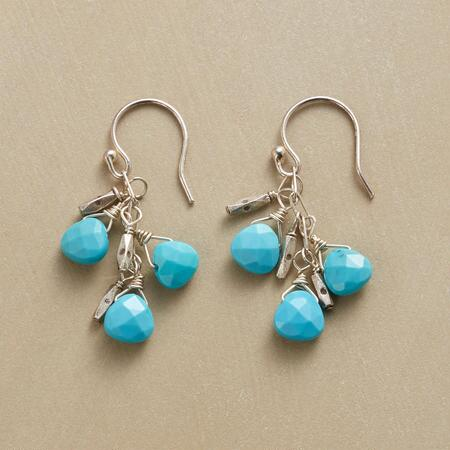 TURQUOISE DUET EARRINGS