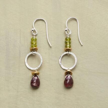 DIVIDING LINES EARRINGS