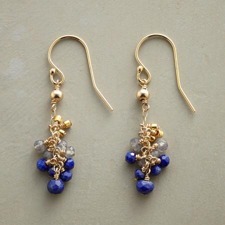 BLUEBERRY CLUSTER EARRINGS