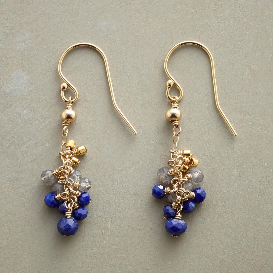 BLUEBERRY CLUSTER EARRINGS