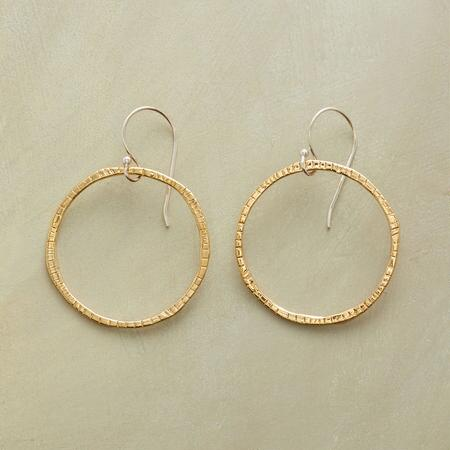 LINEAR RINGS EARRINGS