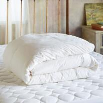 SUNDANCE ESSENTIALS MEDIUM-WEIGHT DOWN COMFORTER