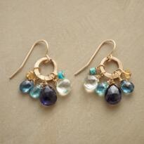 BLUEBOW EARRINGS
