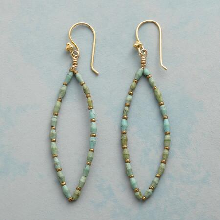 TURQUOISE TRACERY EARRINGS