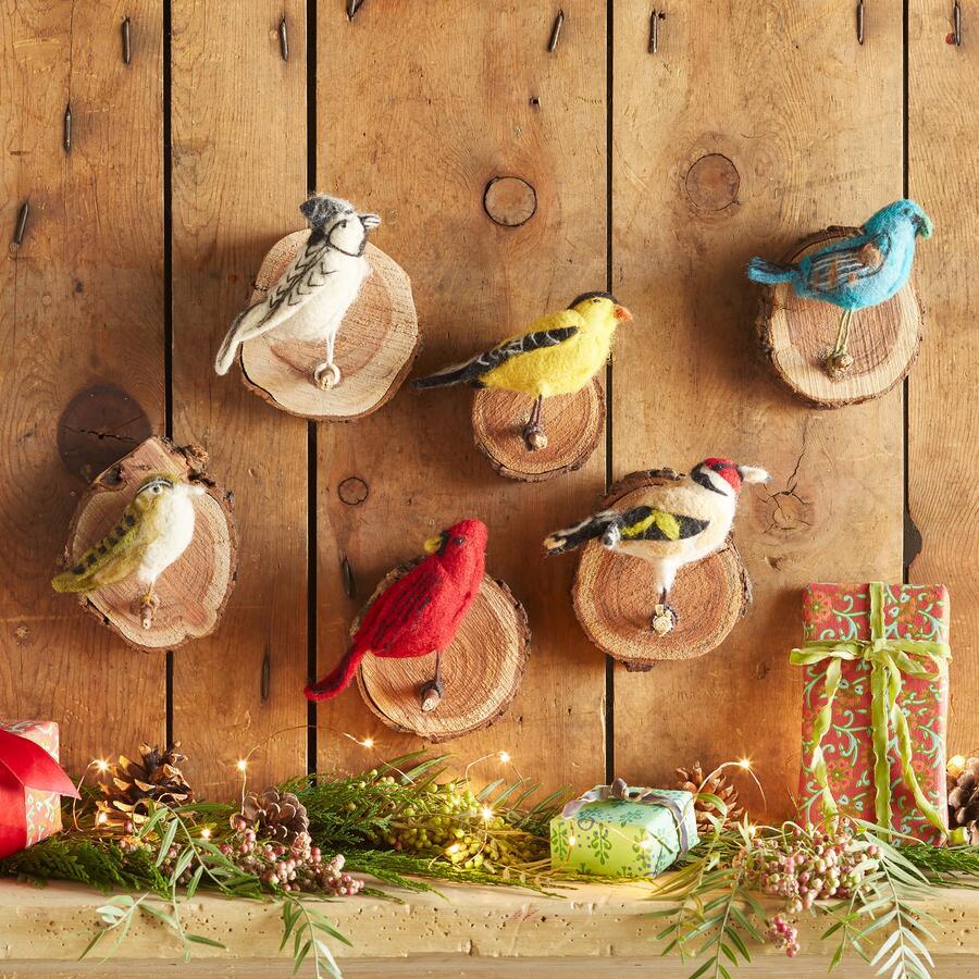 SUNDANCE SONGBIRDS