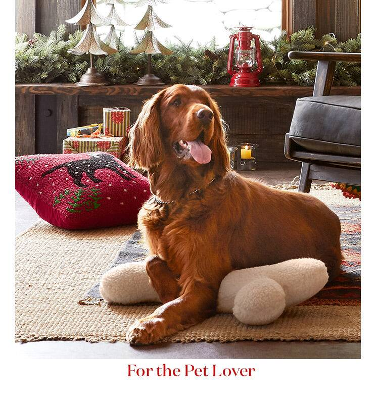 Gifts for the Pet lover