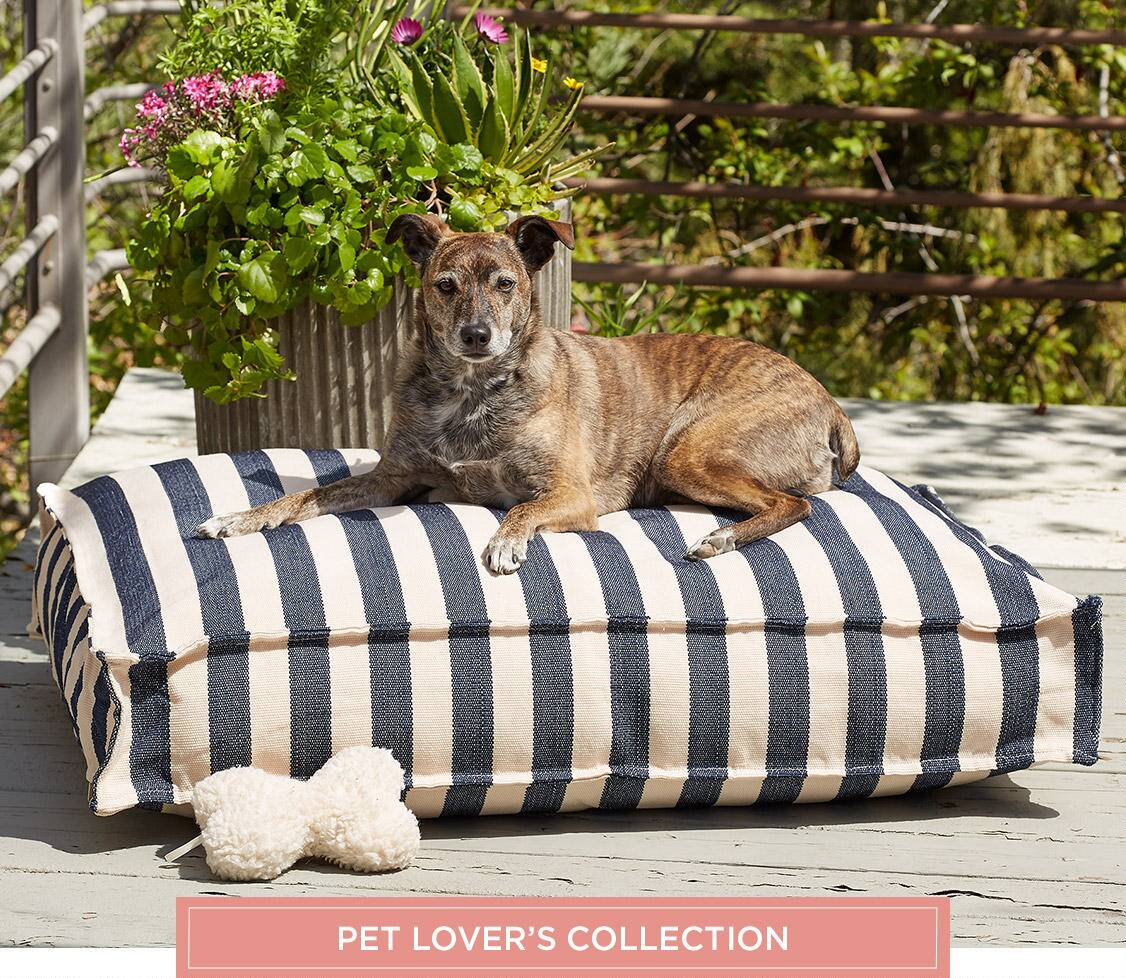 Pet's Lover's Collection