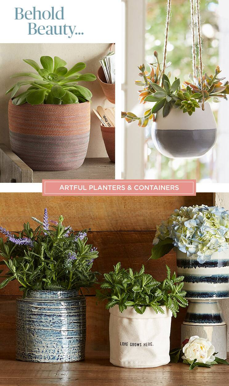 Shop Planters and Containers