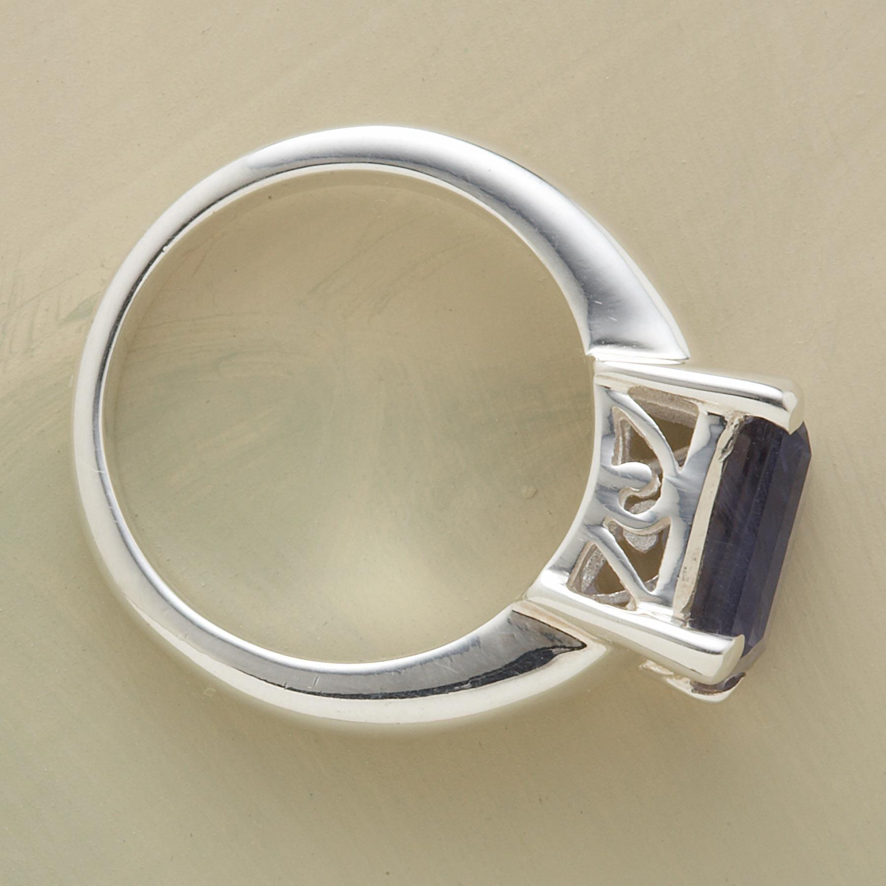 TURN-OF-THE-CENTURY RING: View 2