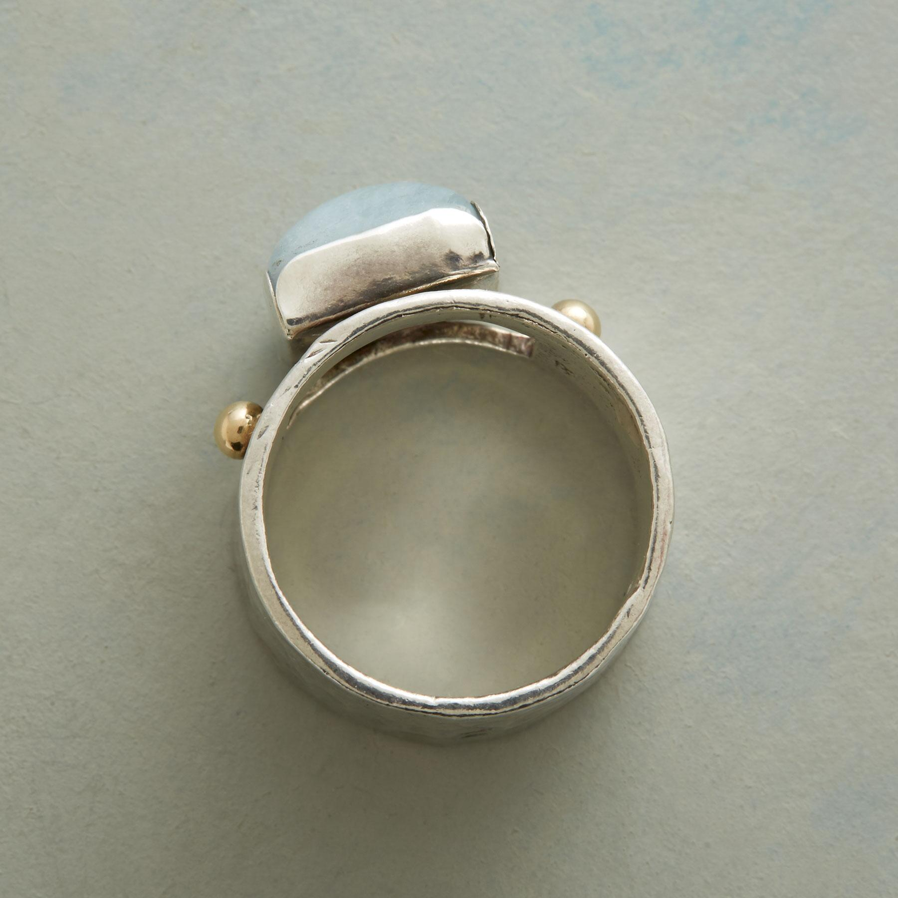 SEA VISTA RING: View 2