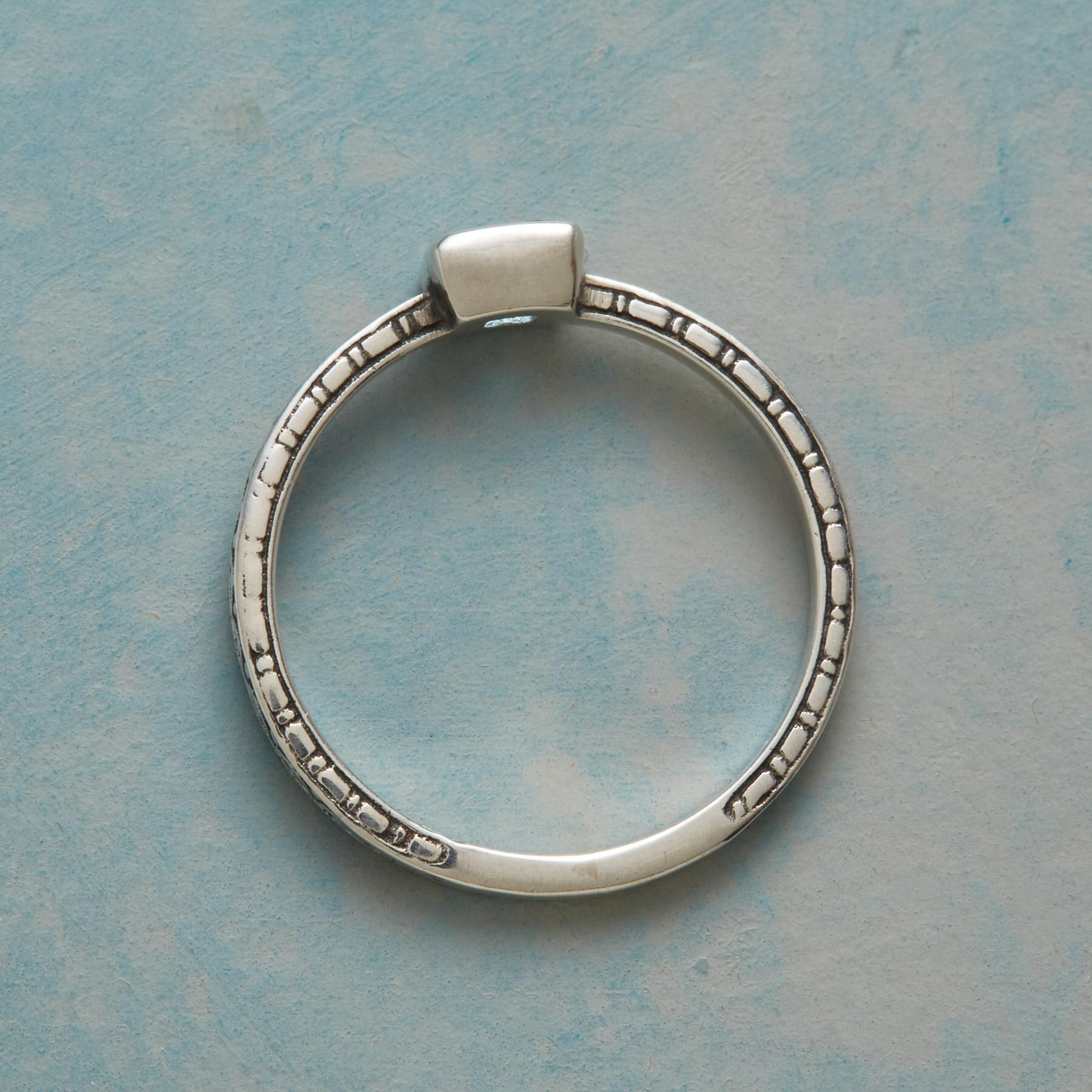 WAVEWATCHER RING: View 2
