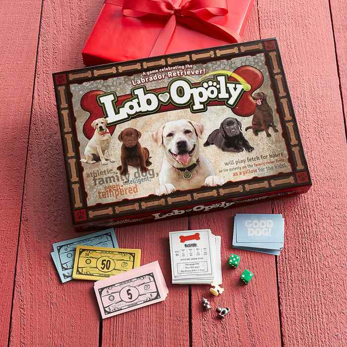 LAB-OPOLY GAME