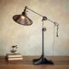 BALANCE ARM LAMP: View 1