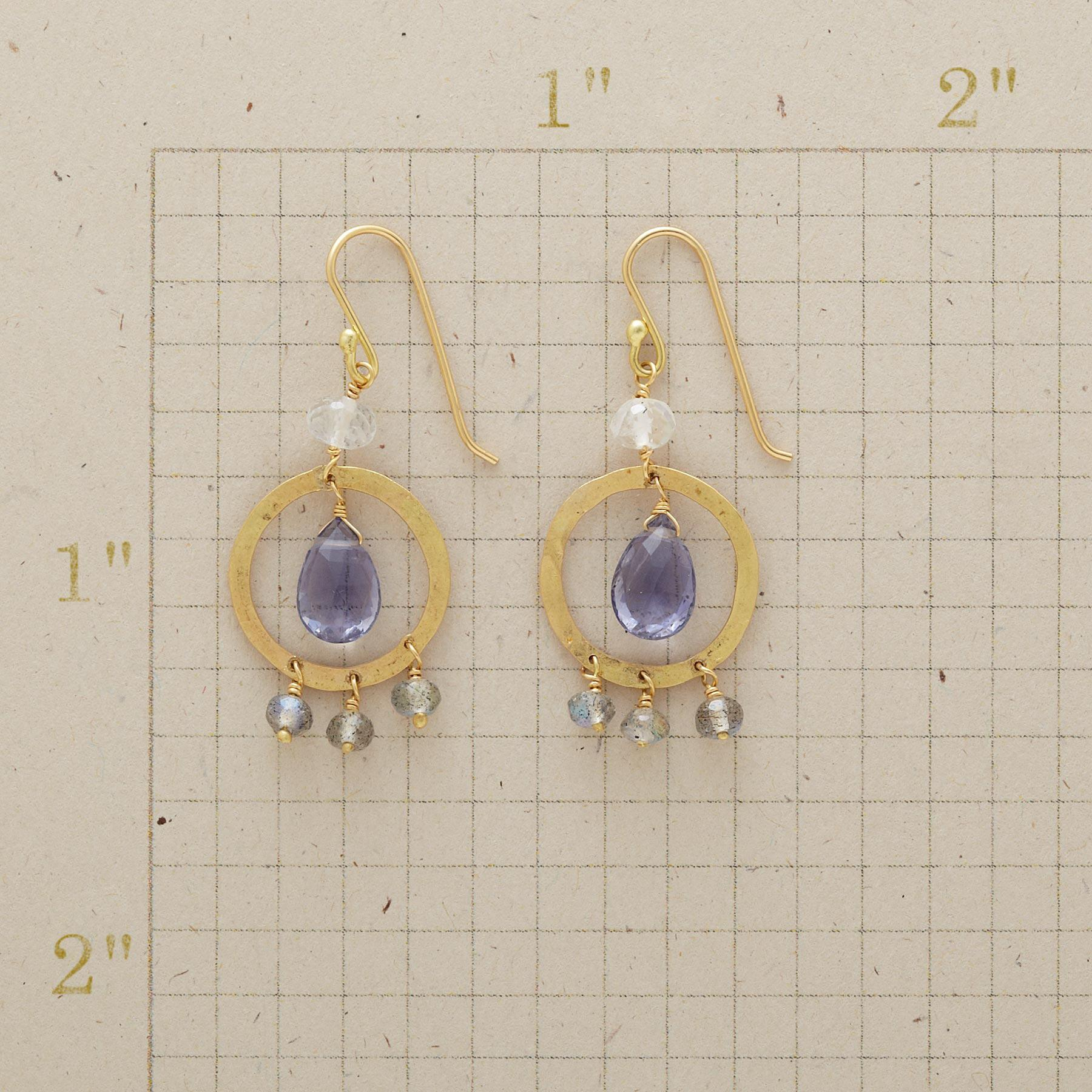 CAGED BIRD EARRINGS: View 2