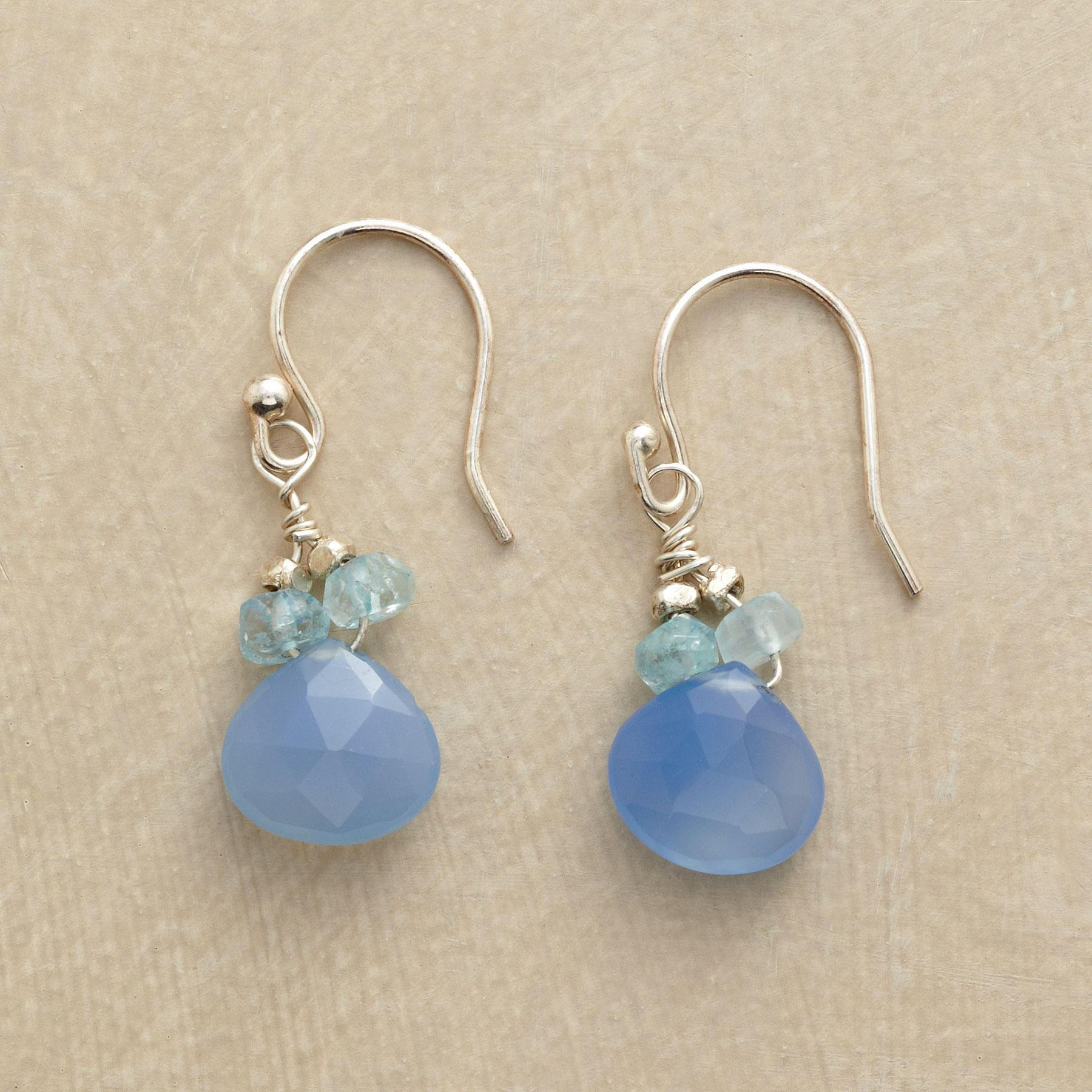 BLUE ON BLUE EARRINGS: View 1