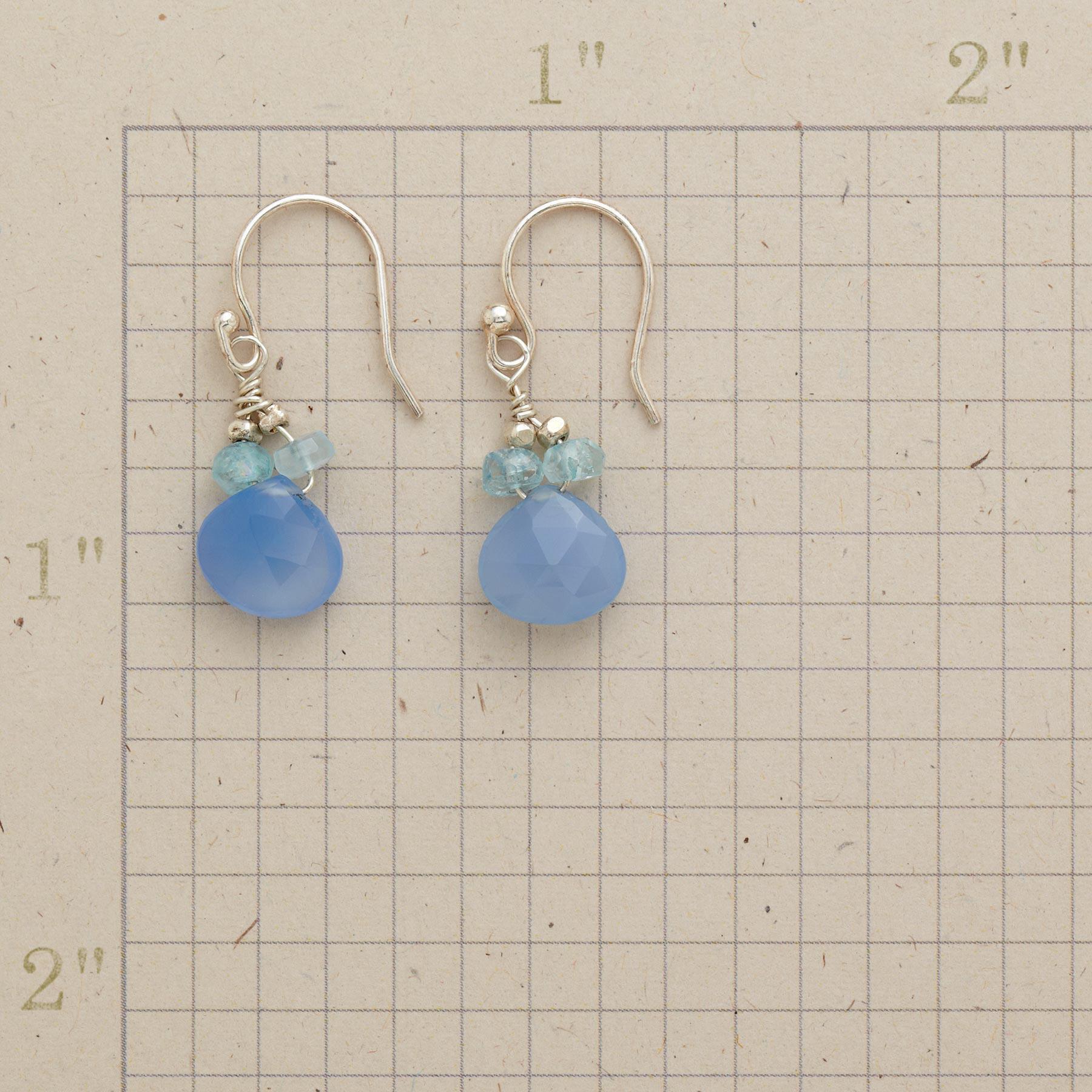 BLUE ON BLUE EARRINGS: View 2