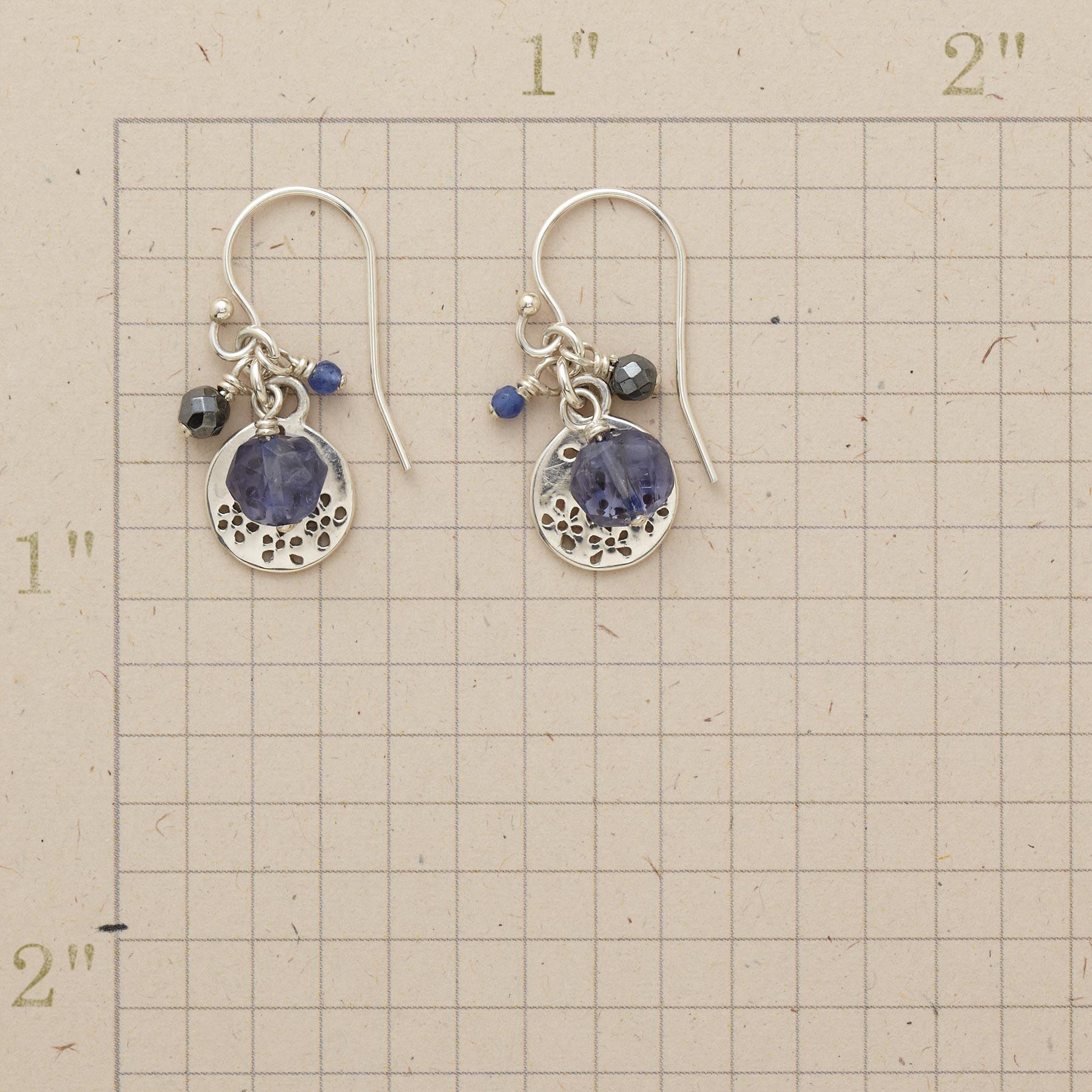 PERFORATED DISK EARRINGS: View 2