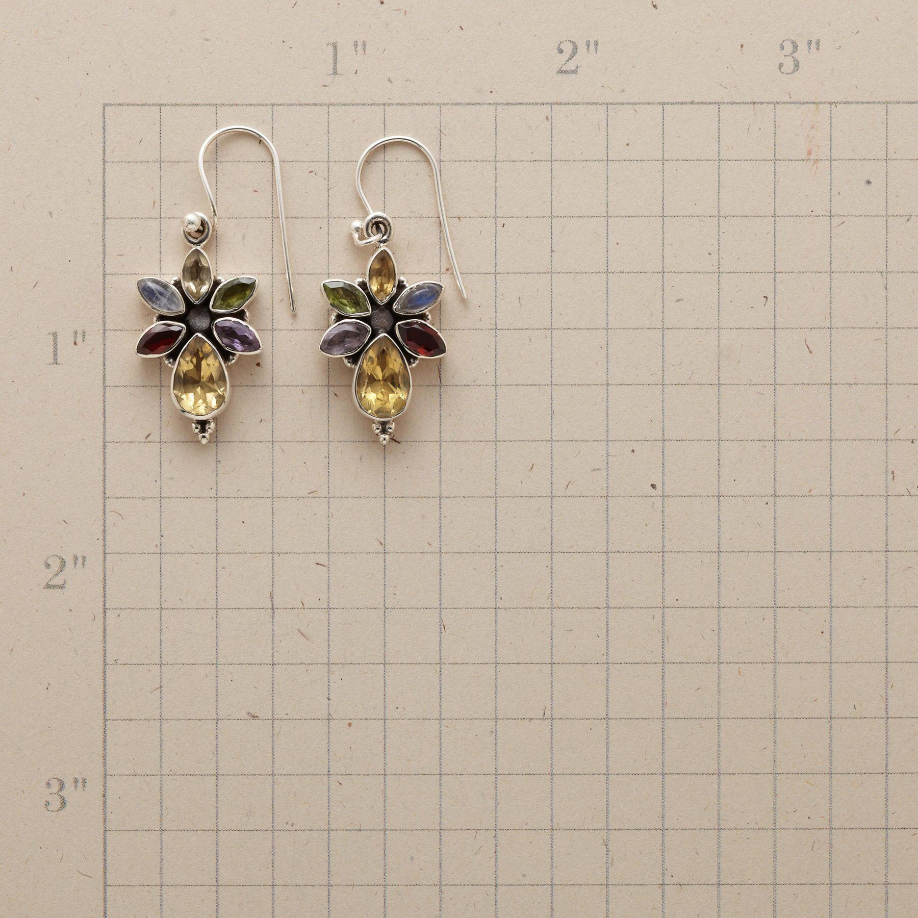 LILIANNA EARRINGS: View 2