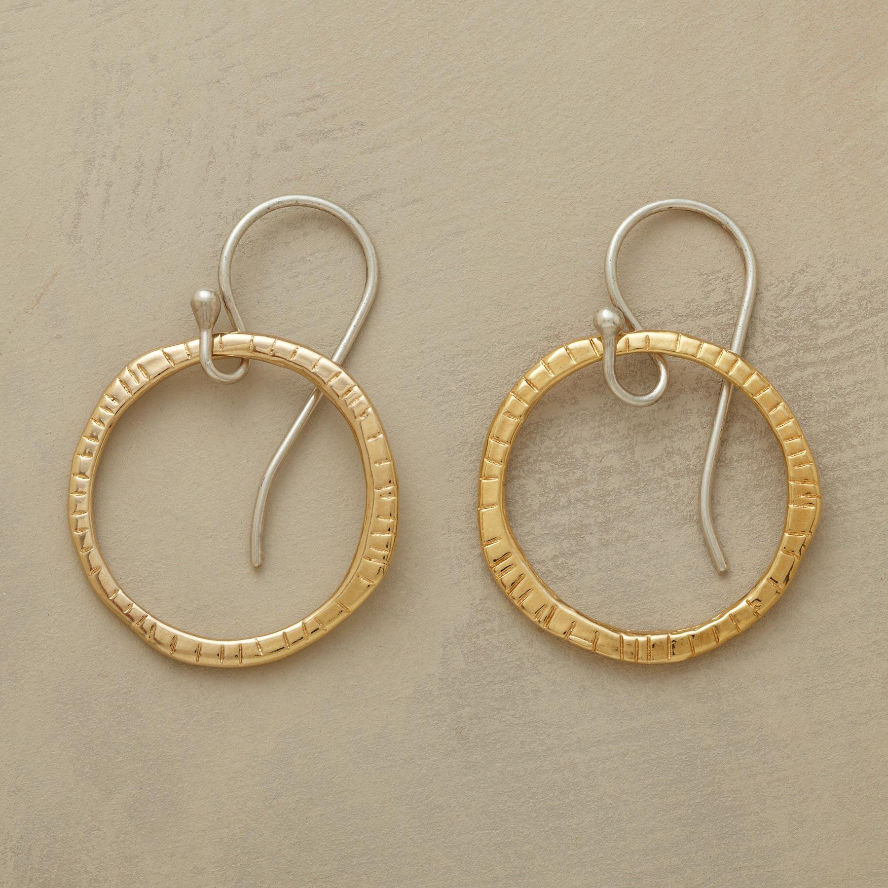NOTCHED HOOPS: View 1