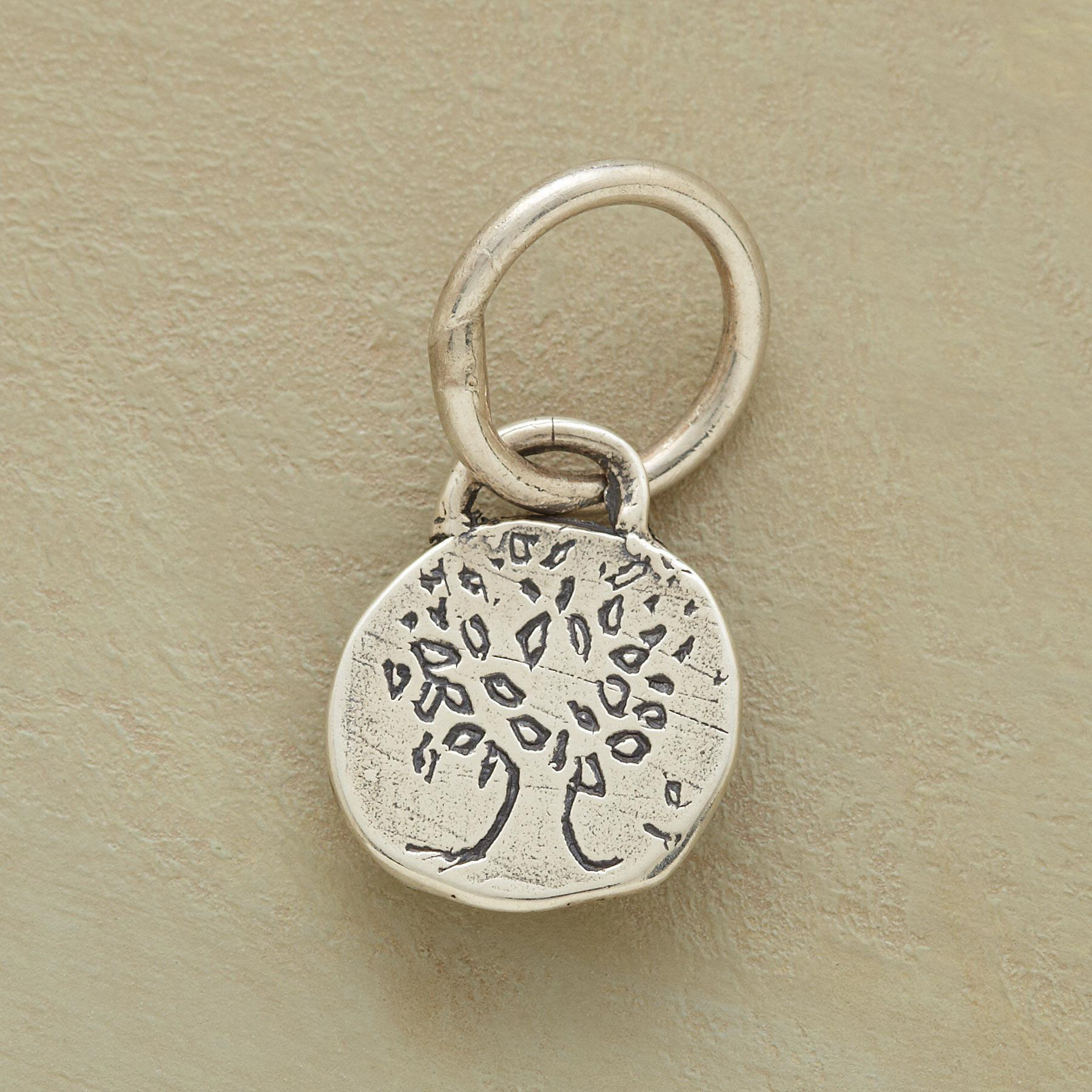 STERLING SILVER GROW STRONG CHARM: View 1