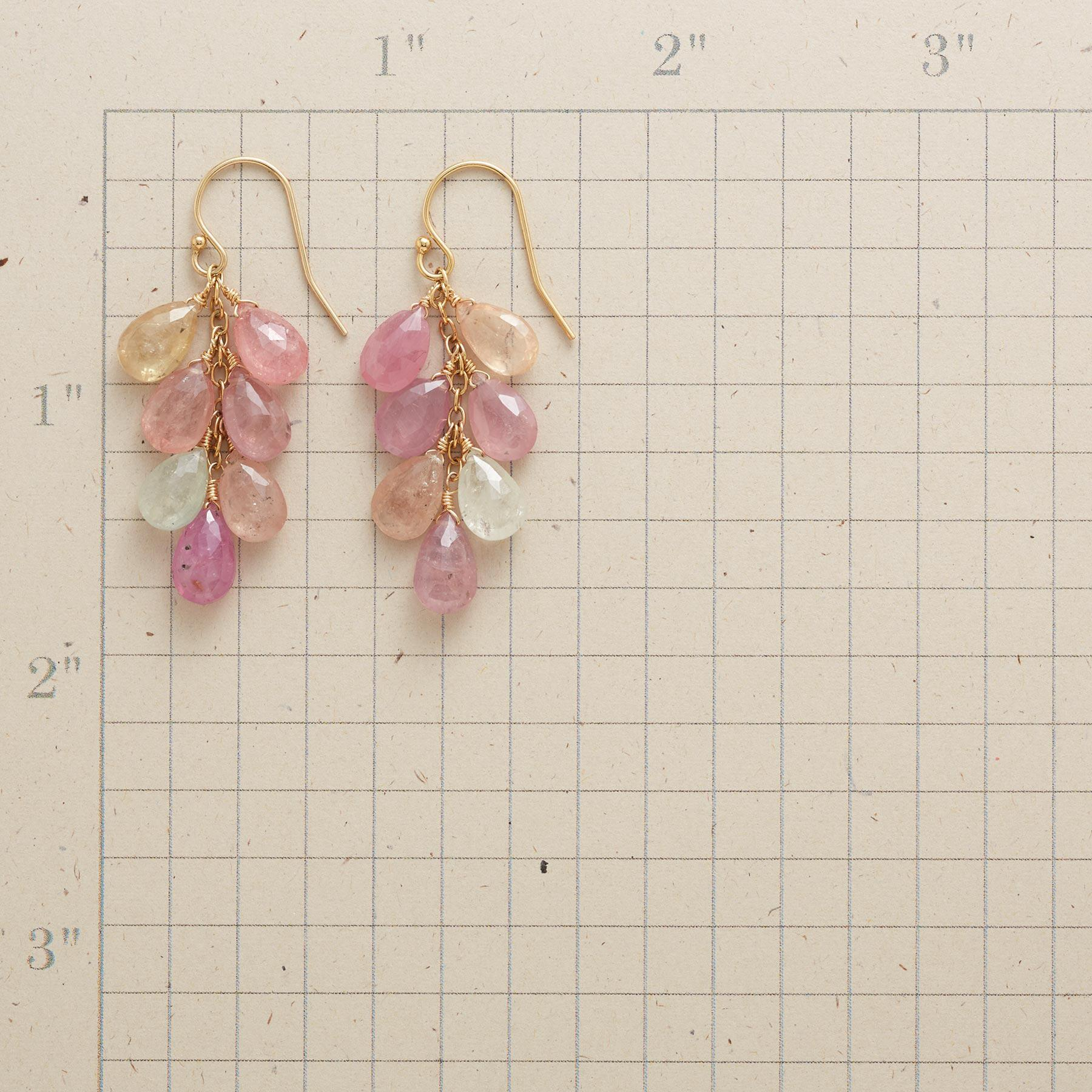 ROSY FUTURE EARRINGS: View 2