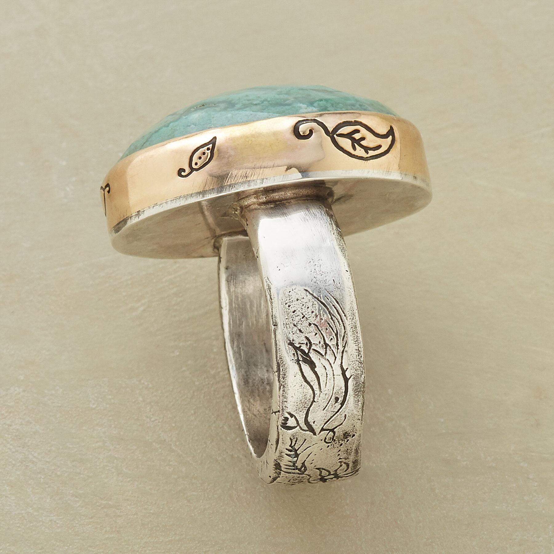 COURAGE & HEART RING: View 3