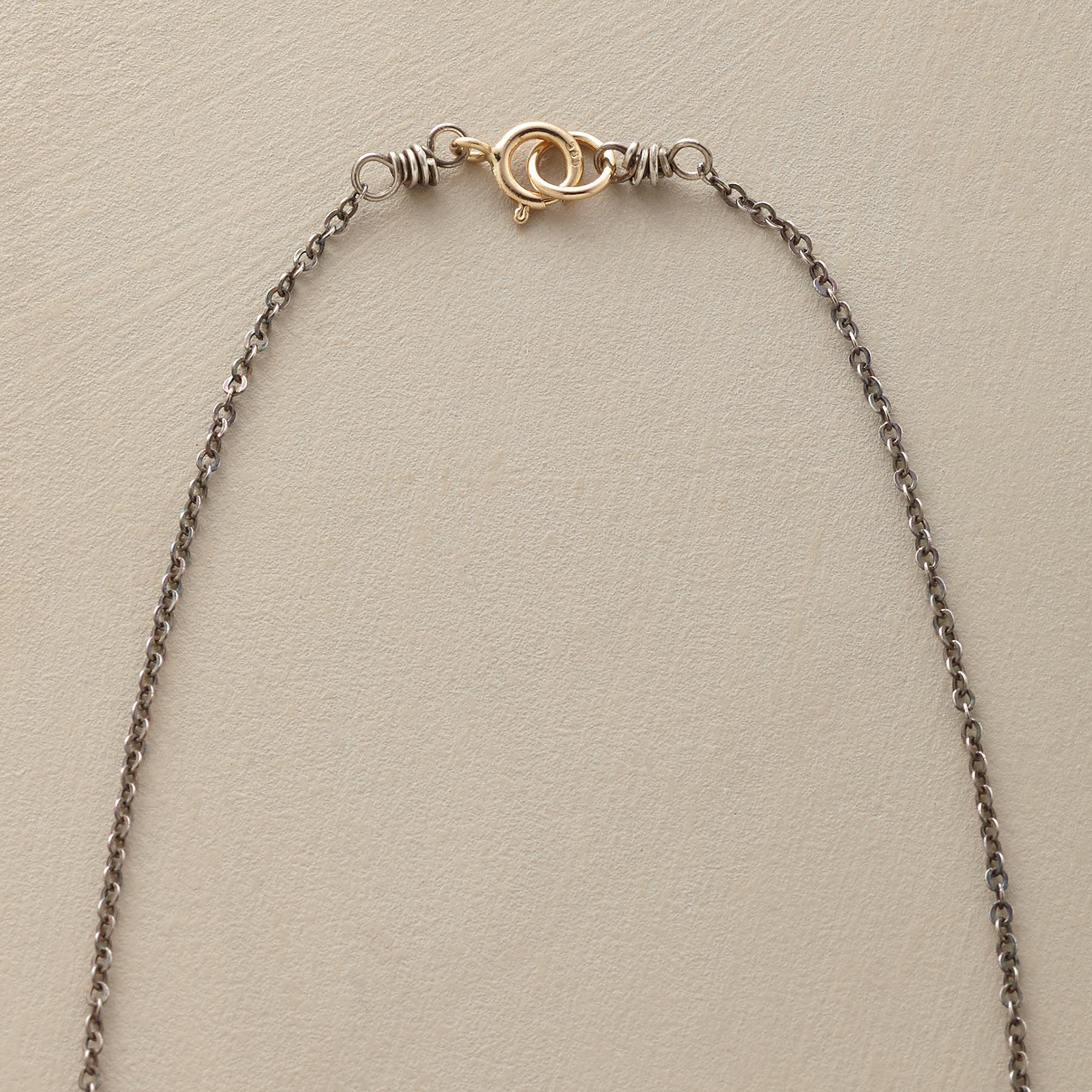 BIT OF LUCK NECKLACE: View 3