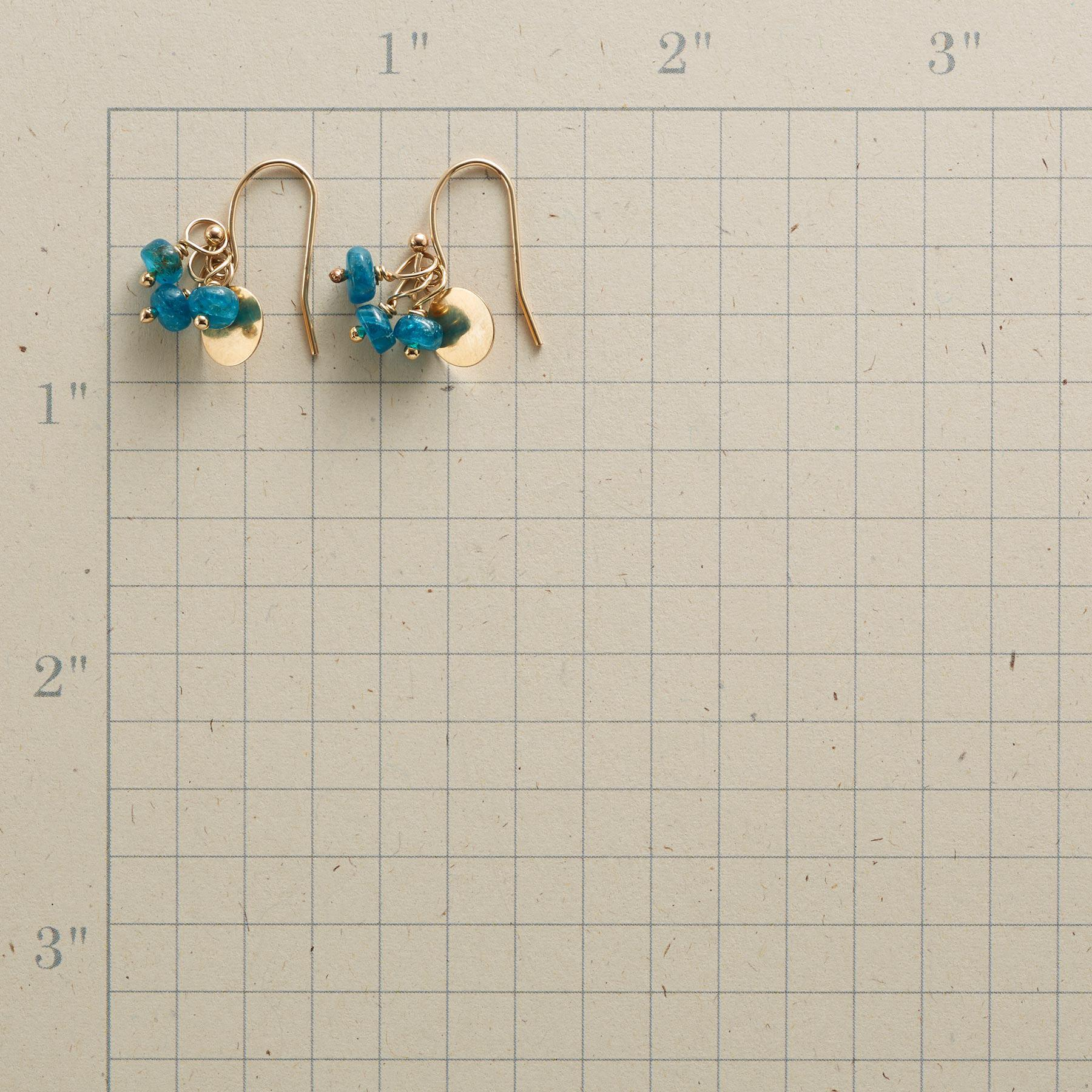 IN SYNC EARRINGS: View 2