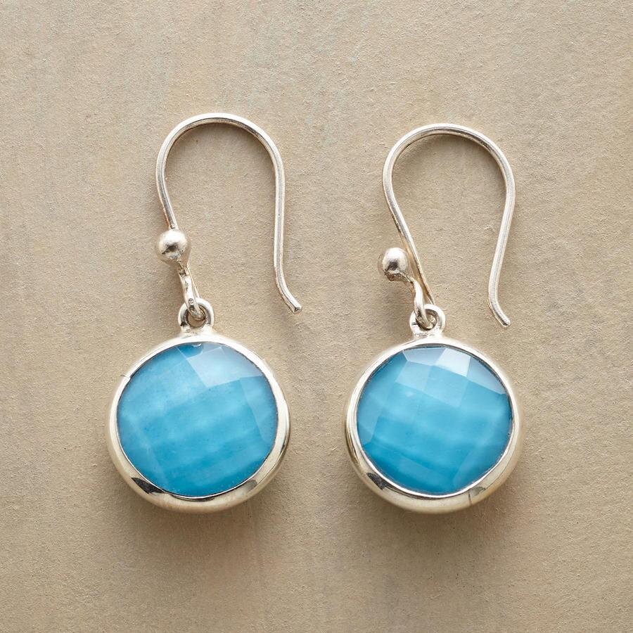 VIEWPOINT EARRINGS
