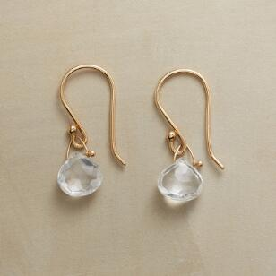 PARADIGM TOPAZ EARRINGS