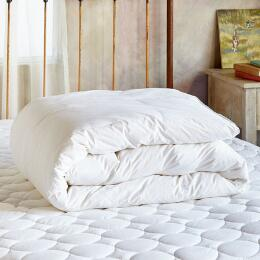 SUNDANCE ESSENTIALS LIGHTWEIGHT DOWN DUVET