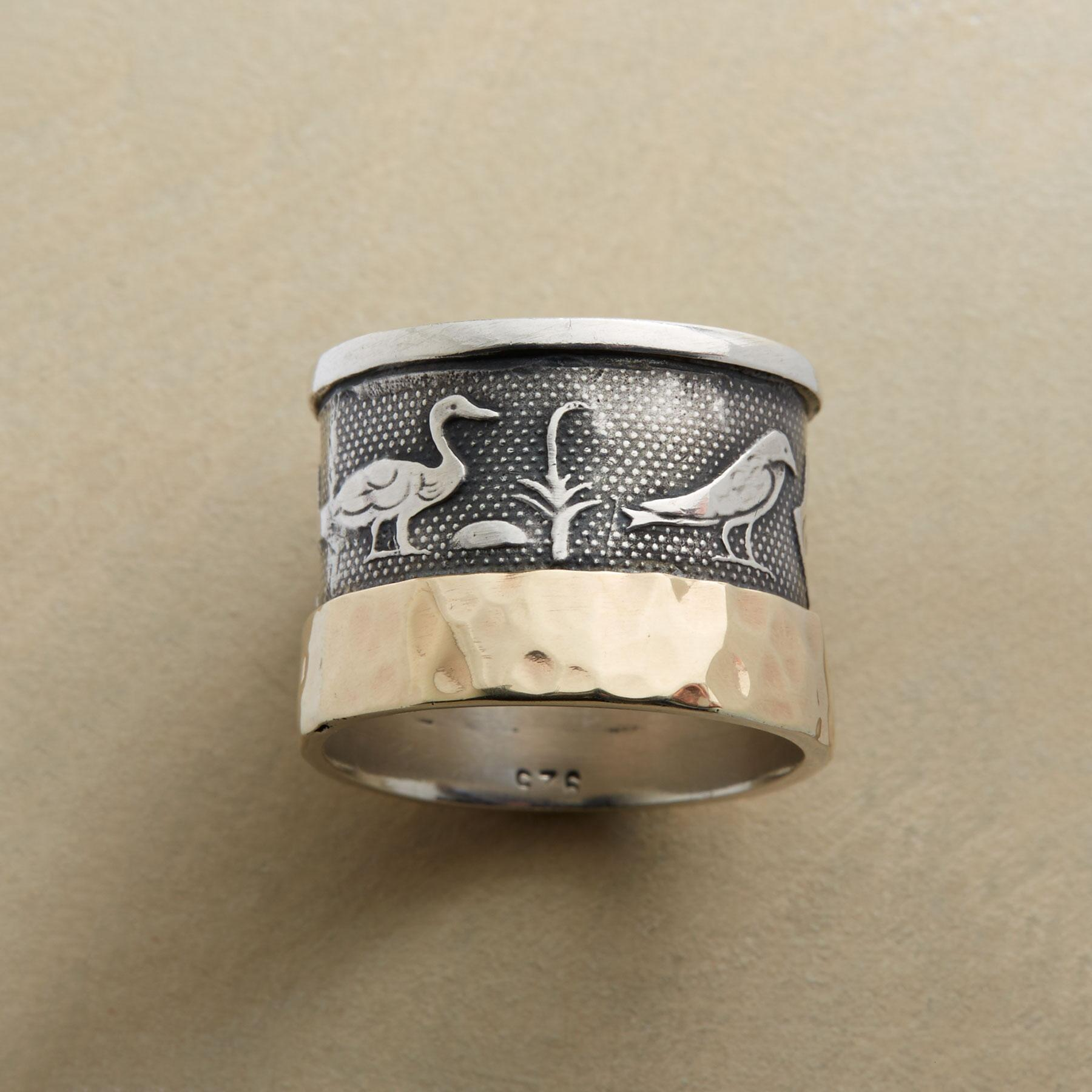 HIEROGLYPH RING: View 1