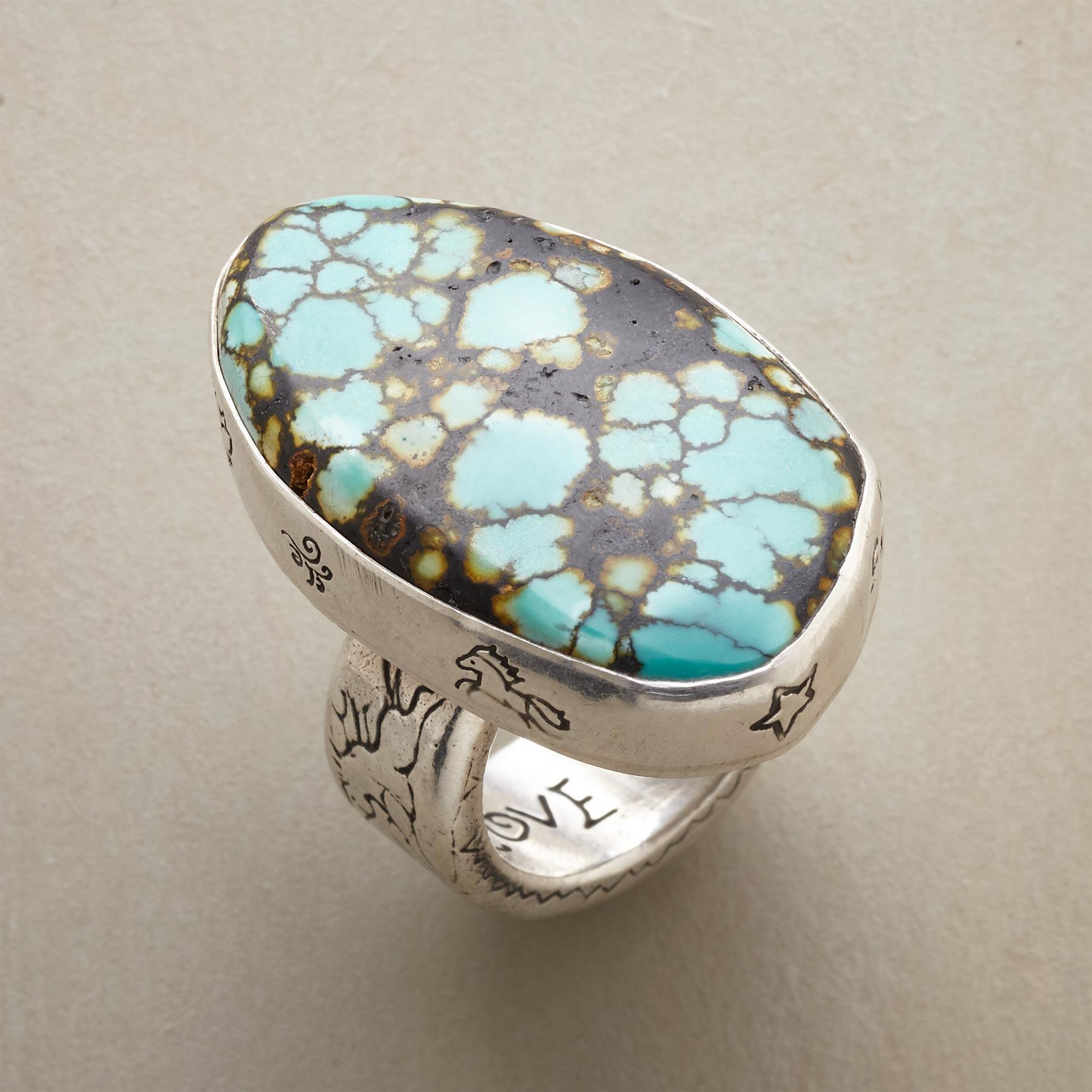 RARE EARTH RING: View 1