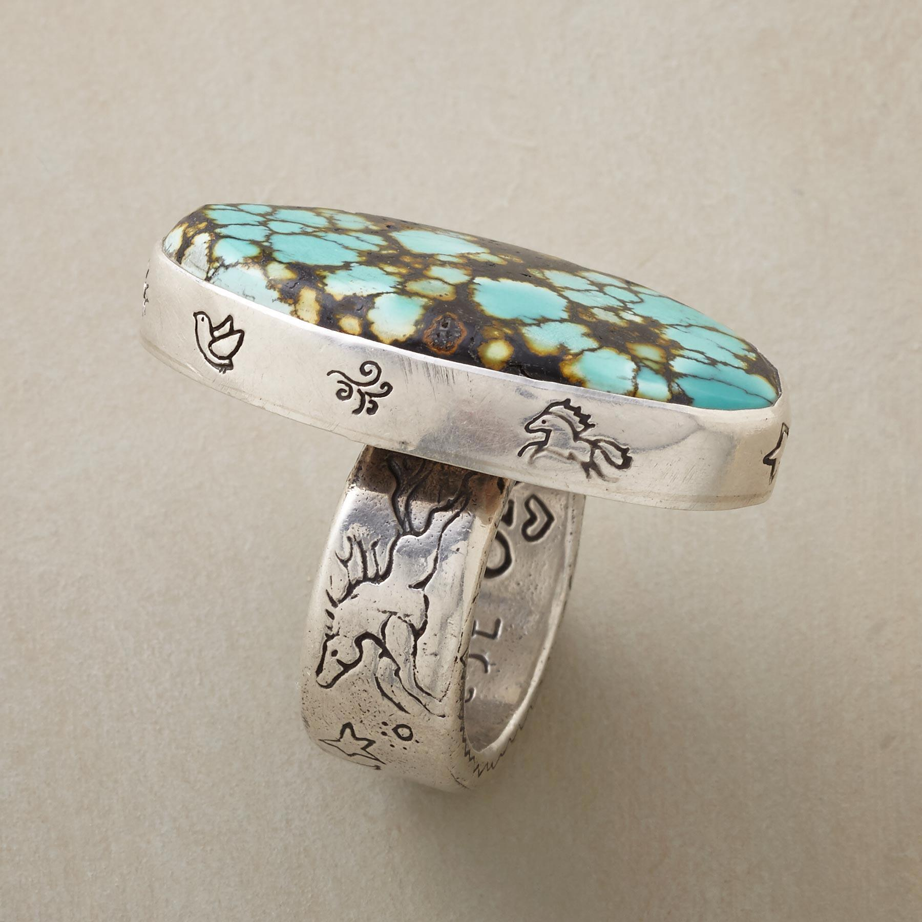 RARE EARTH RING: View 2
