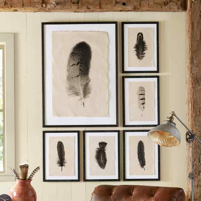 FEATHER STUDIES PRINT