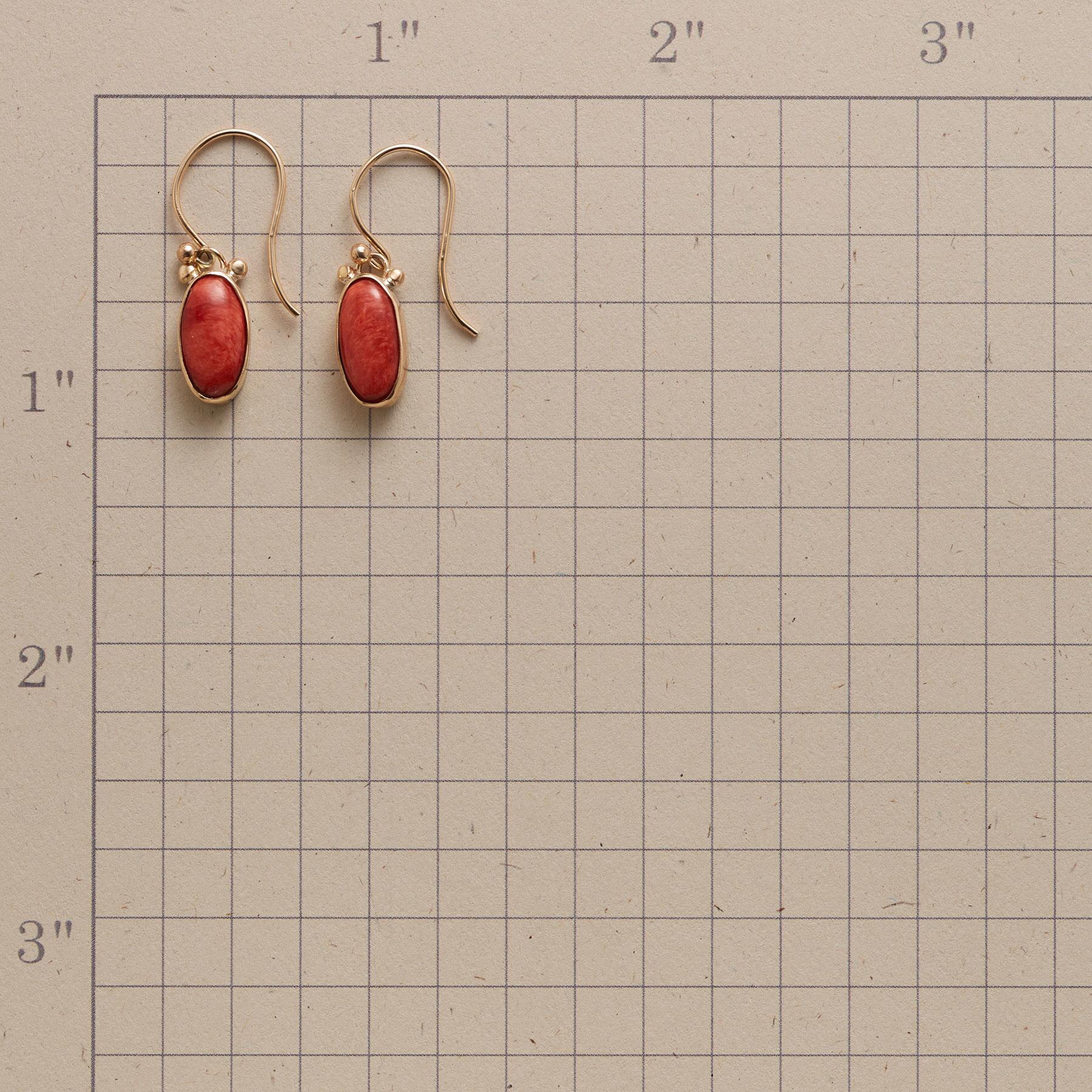 SEA OF CORTEZ EARRINGS: View 2