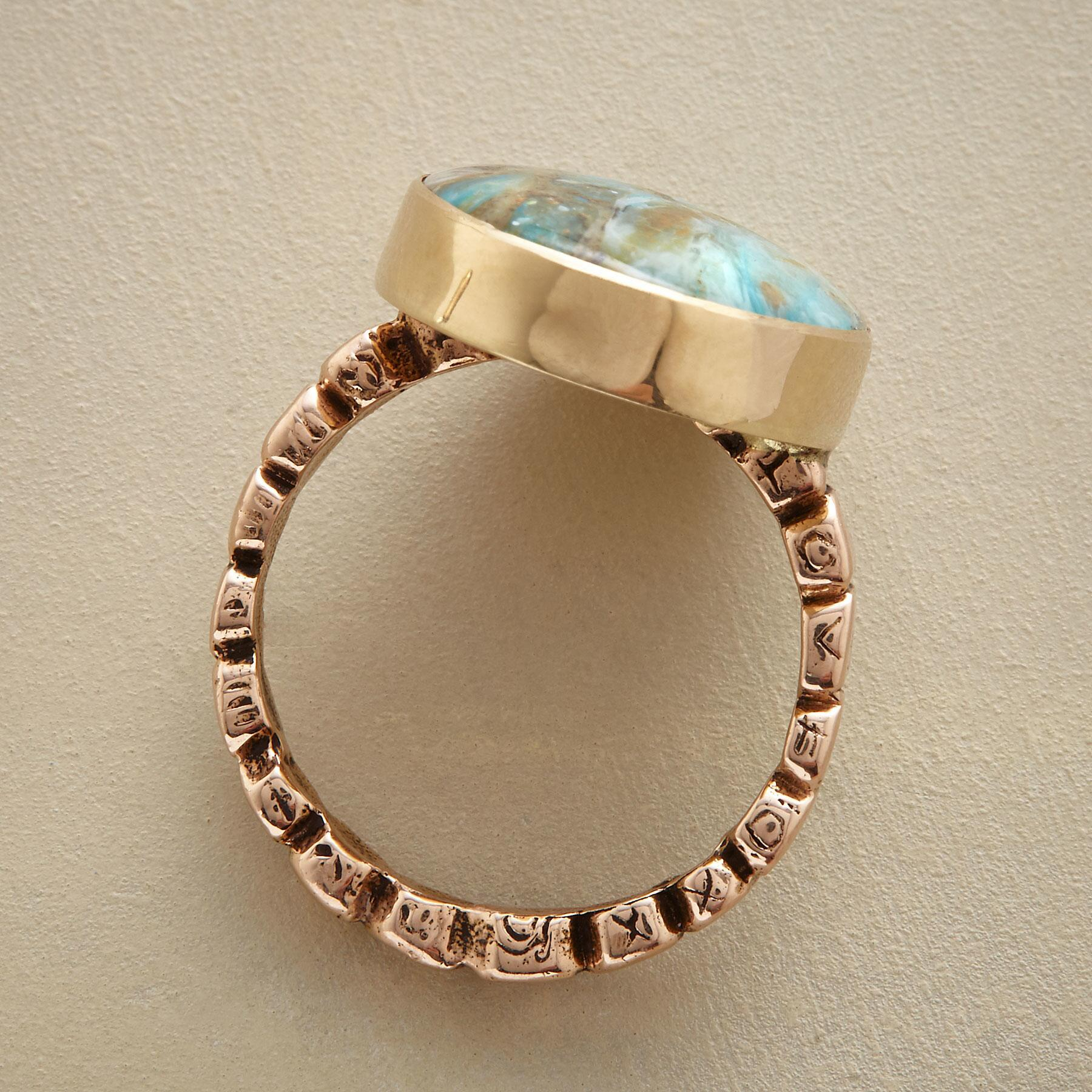 LOVE THE EARTH RING: View 2