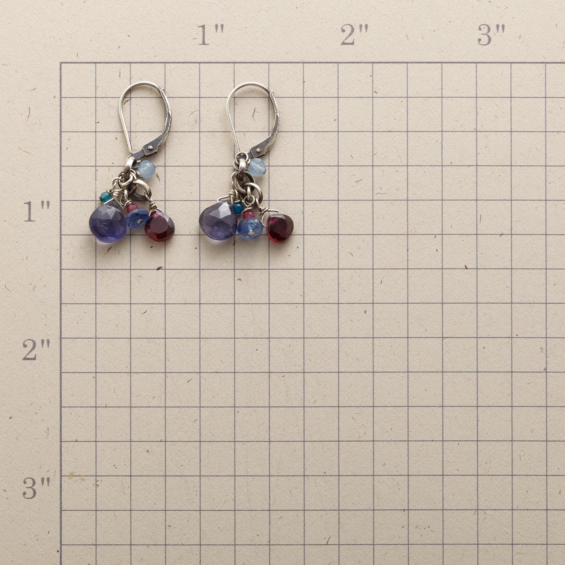MOUNTAIN NIGHTS EARRINGS: View 2