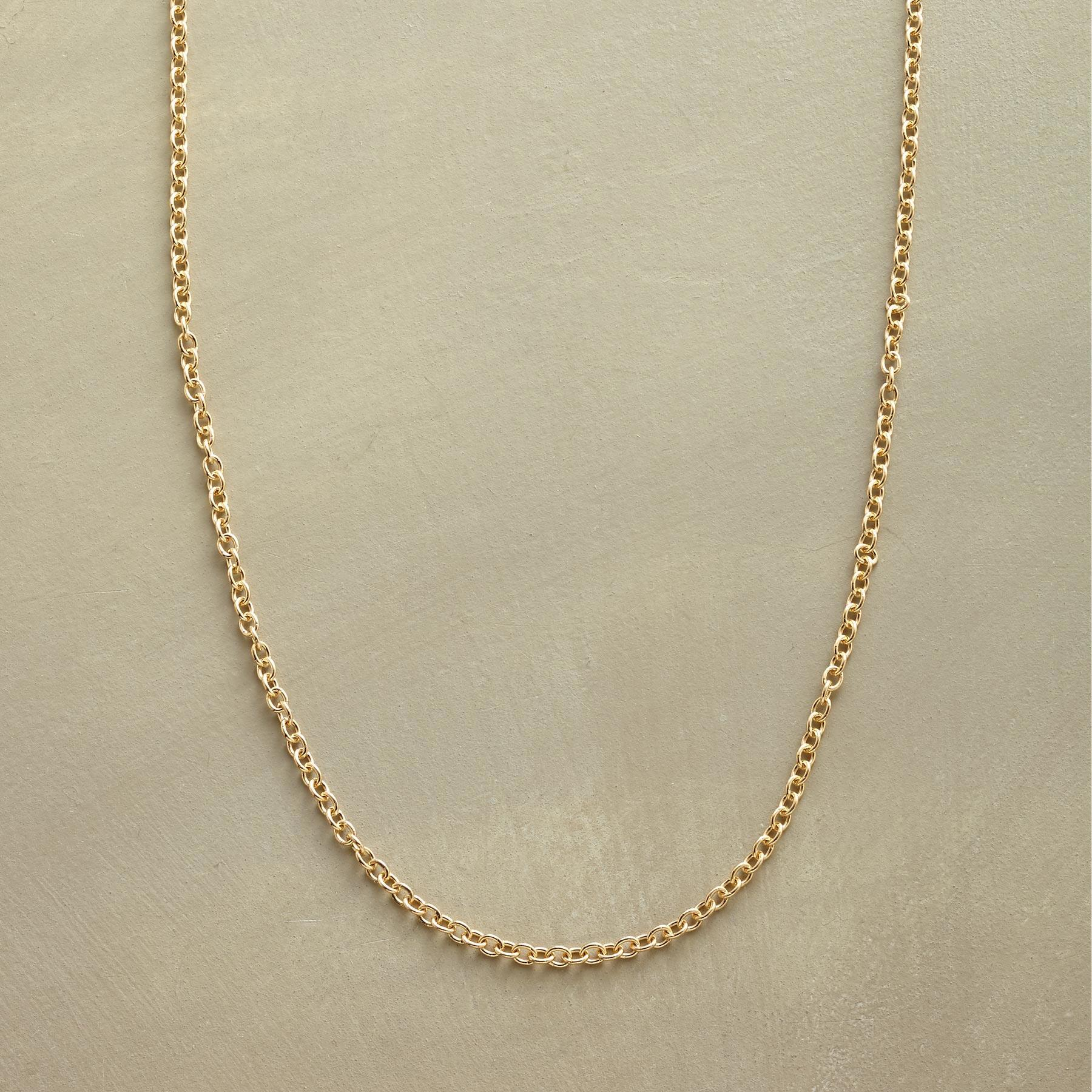 """BE CHARMED 24"""" NECKLACE: View 1"""
