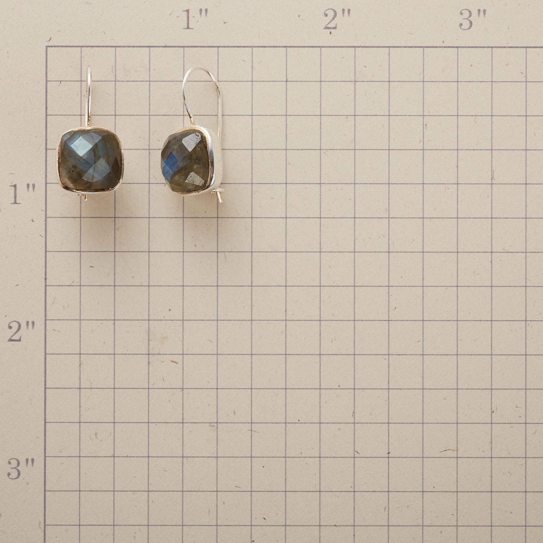 DOUBLE CHECK EARRINGS: View 2