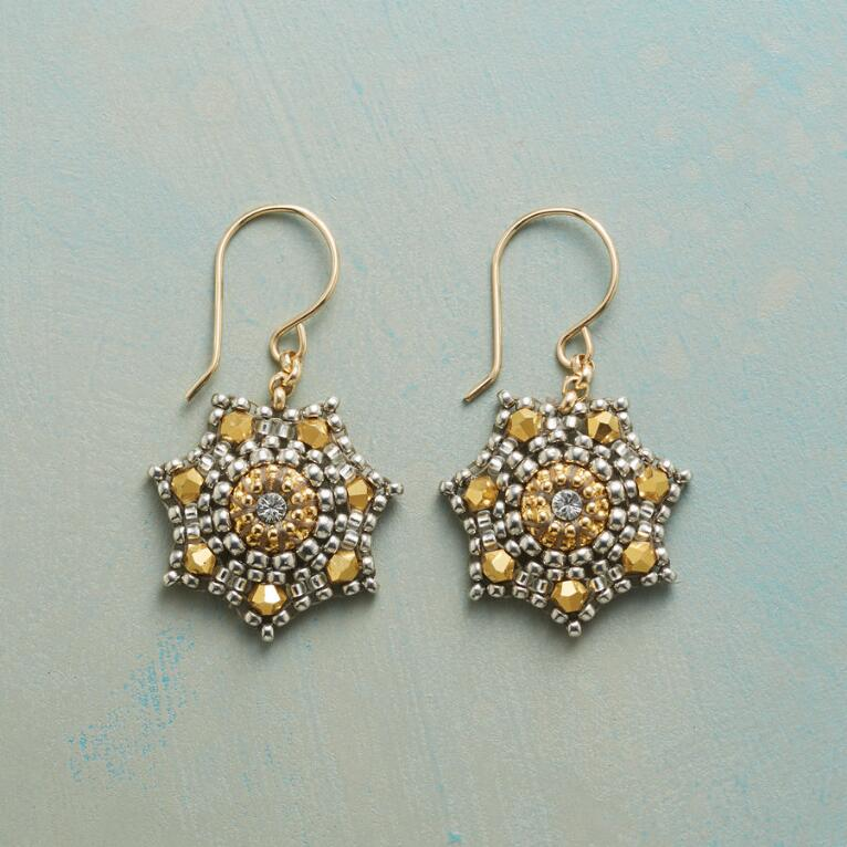 Sea Star Earrings View 1